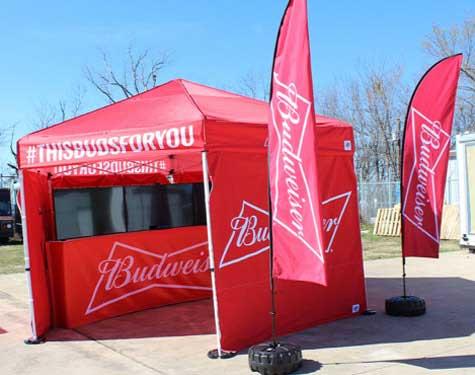 Lime-Media-Case-Studies-Gallery-Budweiser-Baseball-GIMG-A